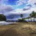 Oceano Pacifico e giungla tropicale, Chocó