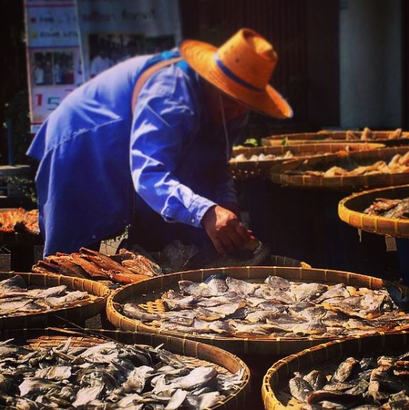Cosa vedere nella città di Bangkok: il Mercato di Chatuchak