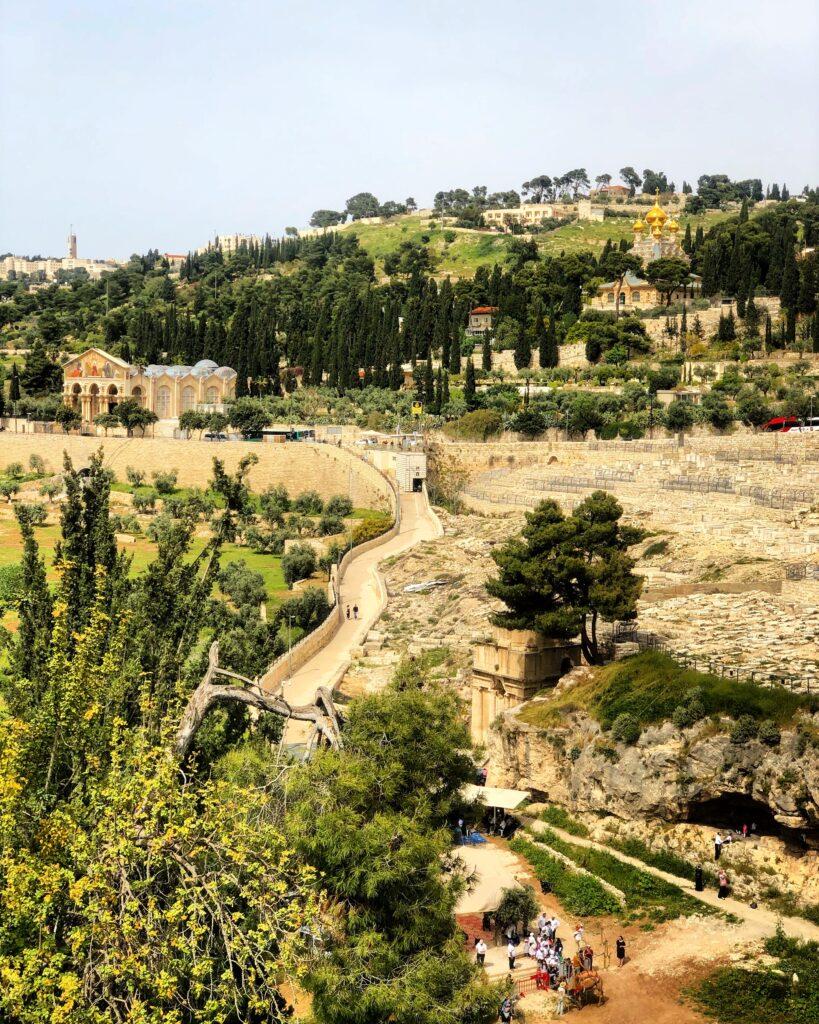 Viaggio a Gerusalemme: Getsemani
