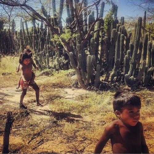 I bambini Wayuu di La Guajira
