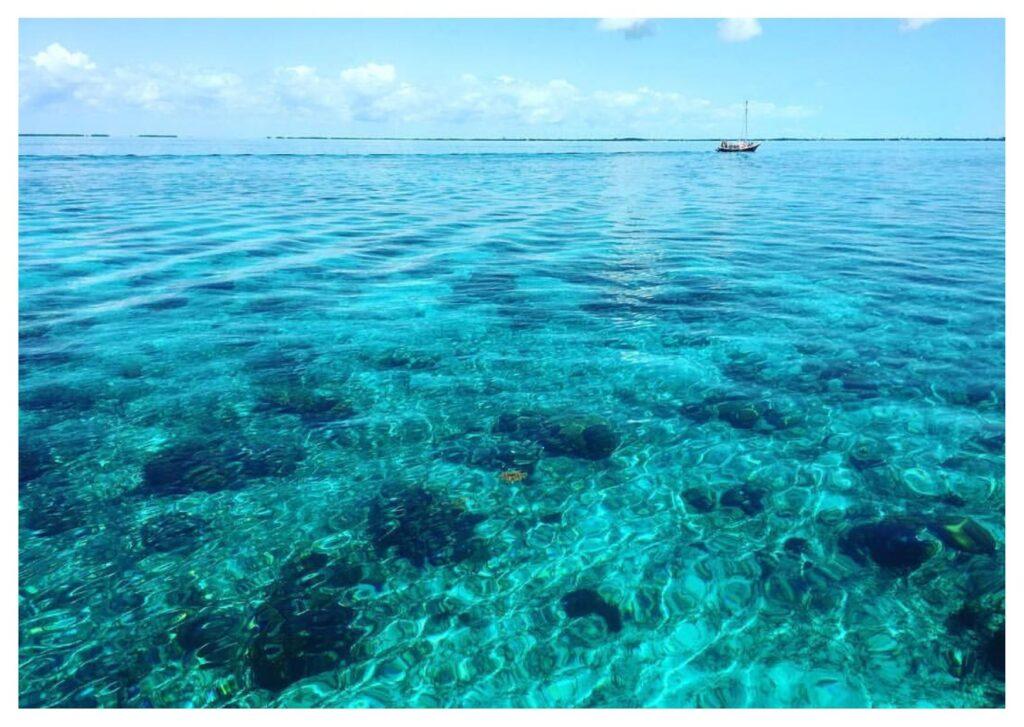 Il mare di Caye Ambergris