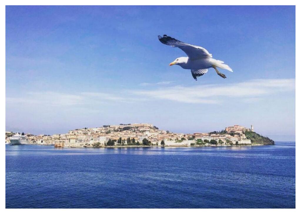 Cosa visitare all'Isola d'Elba: Portoferraio