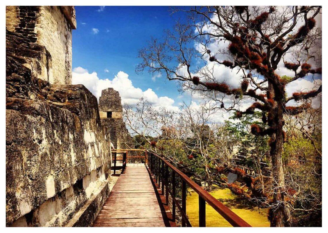 Cosa vedere in Guatemala: il parco nazionale di Tikal