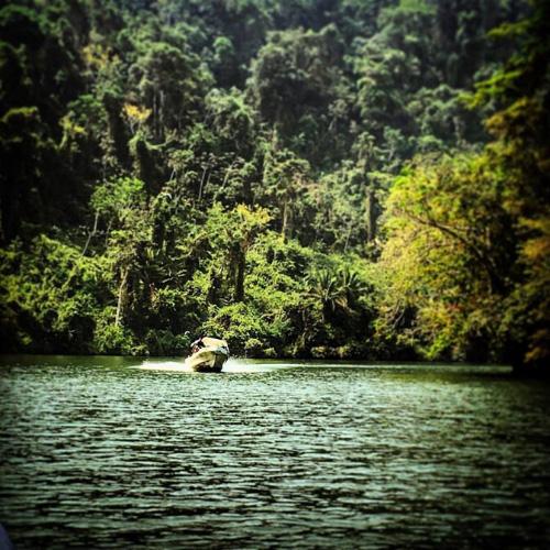 Cosa vedere in Guatemala: Rio Dulce