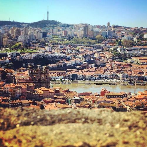 Tutto quello che dovreste sapere sulla città di Porto