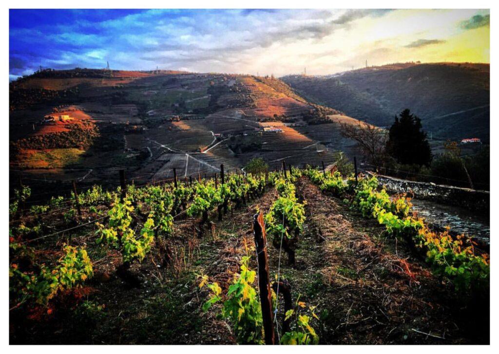 Itinerario di viaggio, Douro Valley