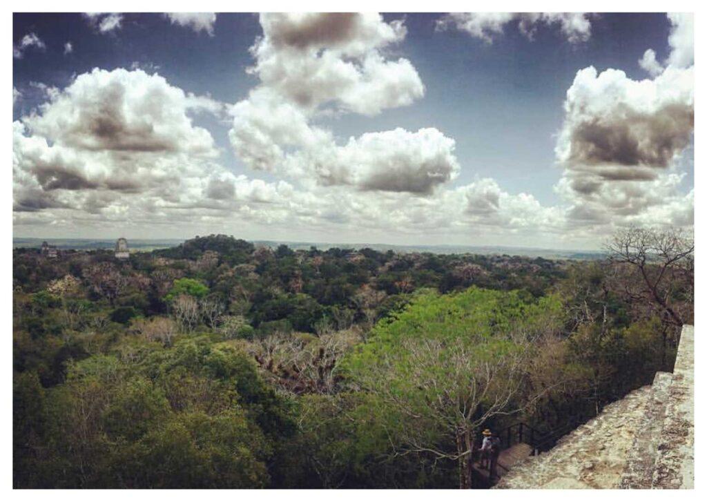 Cosa vedere in Guatemala: Tikal