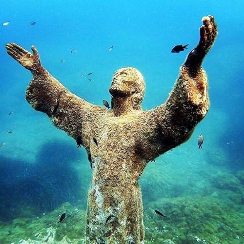 Attività sportive a Portofino, immersioni