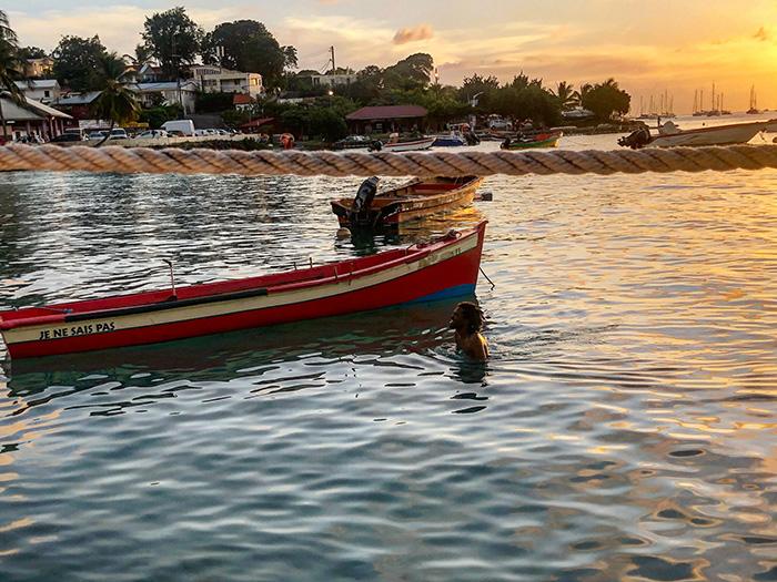 Popolazione della Martinica, l'isola più francese dei Caraibi.