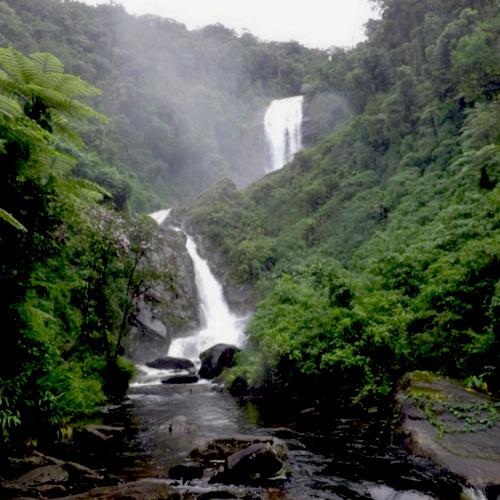 Brasile, Paraty: Parque Nacional da Serra da Bocaina