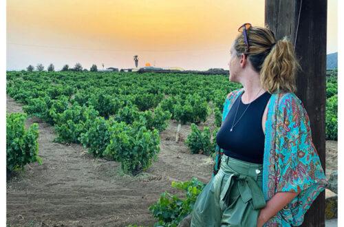 Azienda vinicola di Marco de Bartoli
